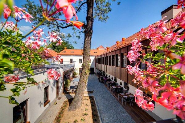 Hotel Restaurant Darwin - фото 18