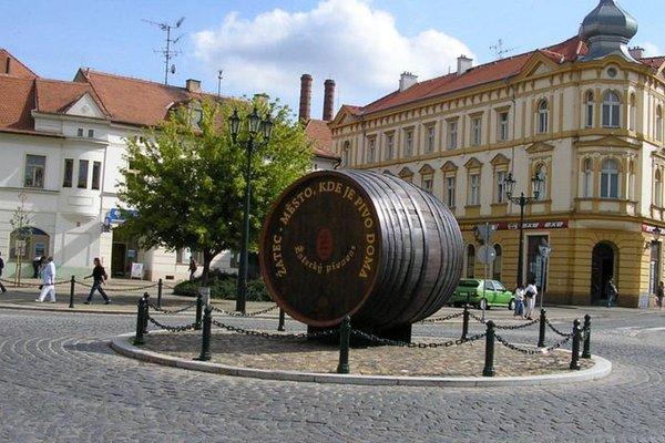 Hotel Zlaty Lev Zatec - фото 19
