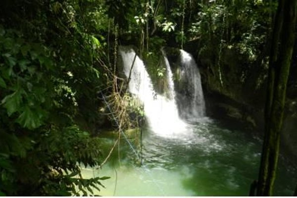 Panglao Chocolate Hills Resort - фото 22