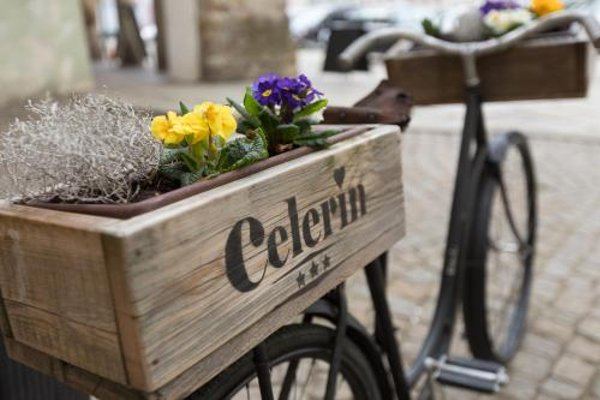 Hotel Celerin - 17