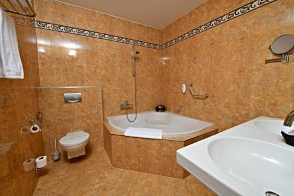 Congress Hotel Dvorak Tabor - фото 15