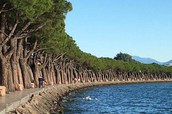 Villaggio Turistico - Camping San Benedetto - фото 20