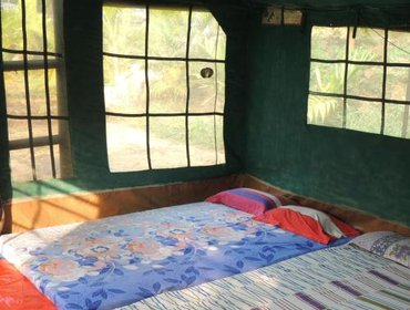 Guesthouse Jungle Nest - Dandeli
