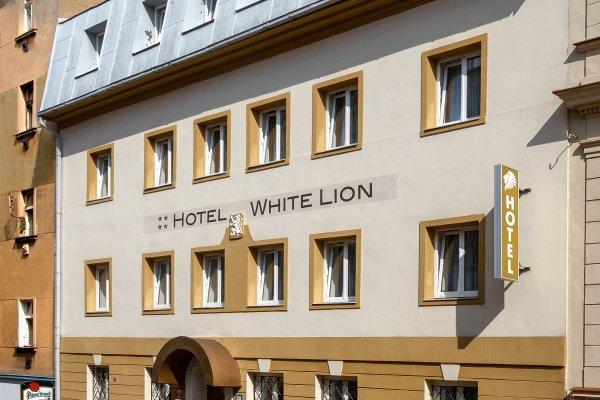 Отель Bily Lev - фото 20