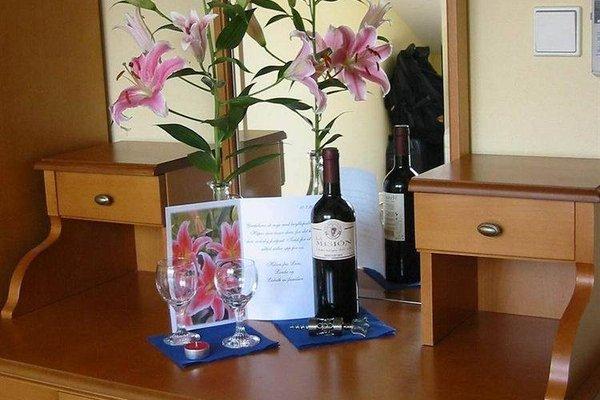 Hotel Brezina Pension - фото 12