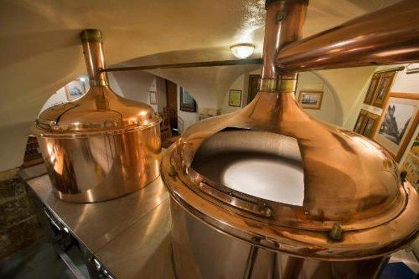 U Medvidku-Brewery Hotel - фото 9