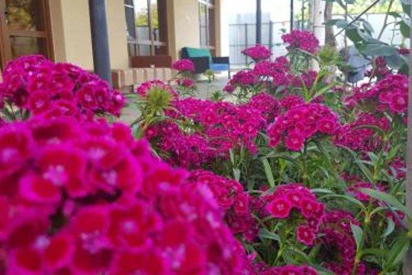 U Norika i Susanny Guest House - фото 8