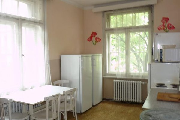 Alfa Tourist Service - Hostel Svehlova - фото 9