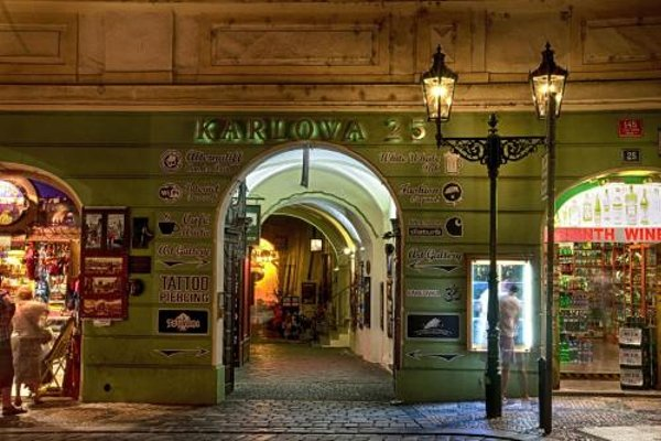 Karlova 25 Apartments - фото 12