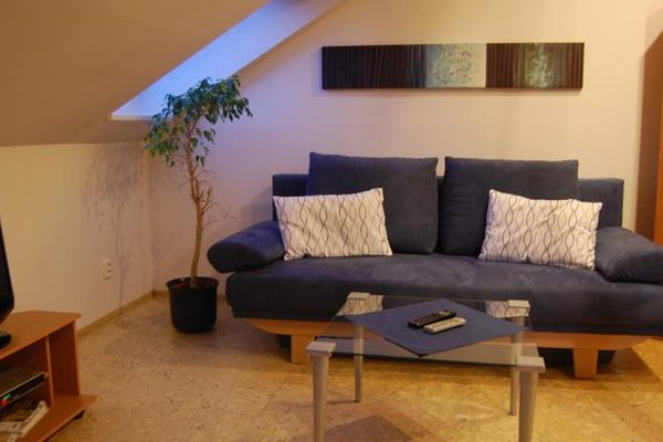 Apartmany U Stareho Labe - фото 5