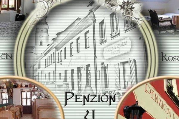 Penzion U Holubu Novy Jicin - фото 17