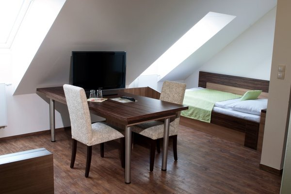 Hotel U Daliborky - фото 21
