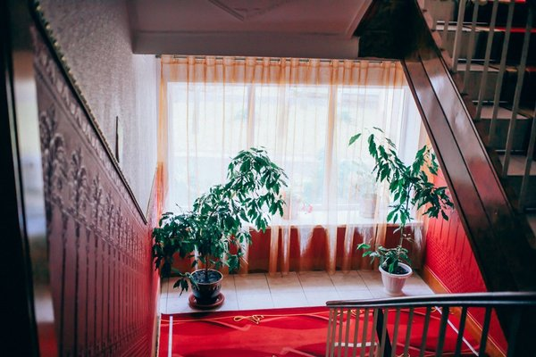 Отель «Сосновый Бор» - фото 11