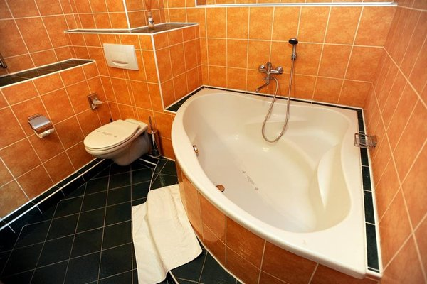 Romantic Hotel Mlyn Karlstejn - 6