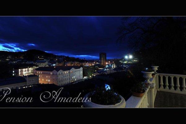 Amadeus - фото 17