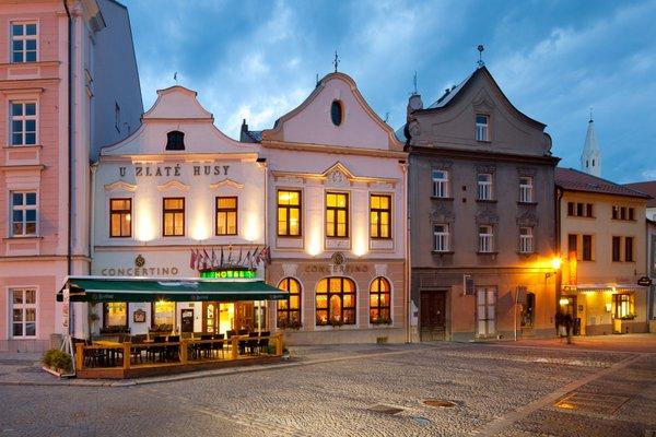 Hotel Concertino Zlata Husa - фото 23
