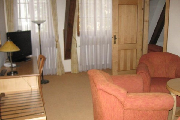 Hotel Zlaty Lev - фото 9