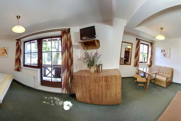 David Wellness Hotel - фото 11