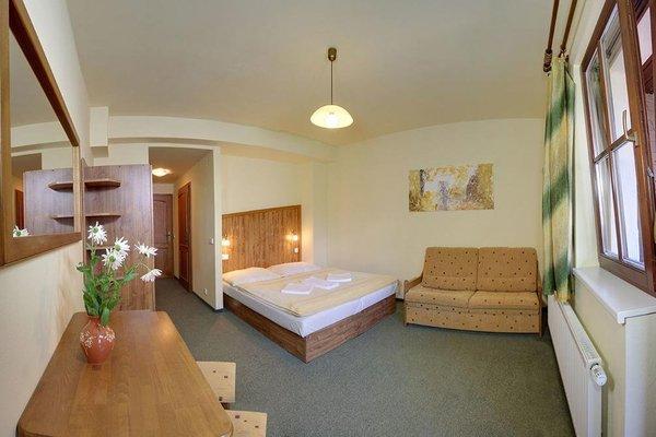 David Wellness Hotel - фото 13
