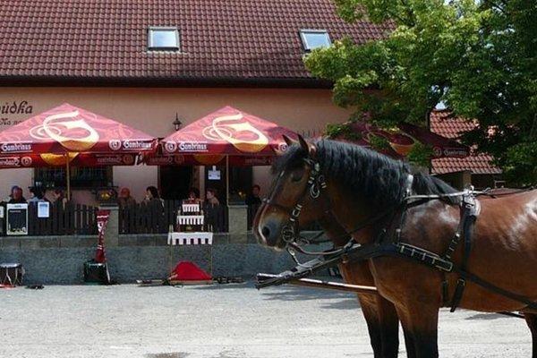 Rodinny Penzion s Restauraci - Hospudka na Navsi - фото 23