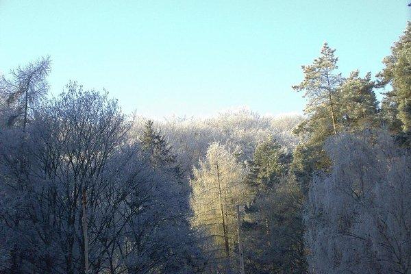Waldgaststatte Sennhutte - фото 14