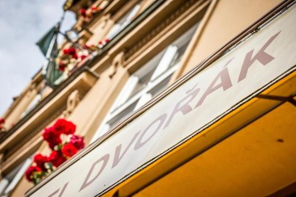 Hotel Dvorak Cesky Krumlov - фото 12