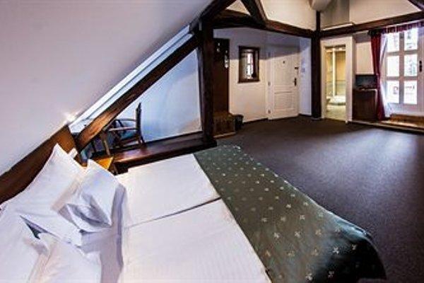 Hotel Dvorak Cesky Krumlov - фото 14