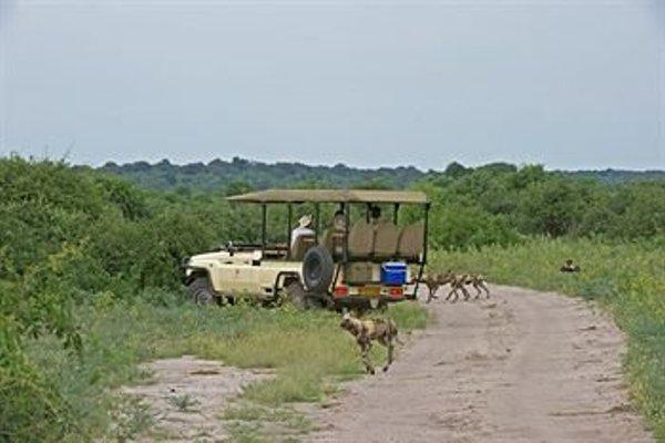 Sanctuary Chobe Chilwero - фото 12