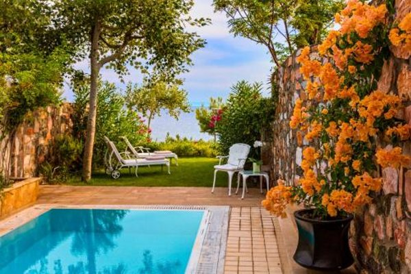Danai Beach Resort & Villas (Данаи Бич Резот энд Виллас) - фото 50