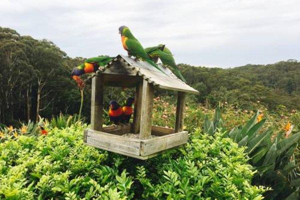 The Outlook Cabana - фото 14