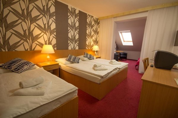 Hotel Maroli Mikulov - фото 4