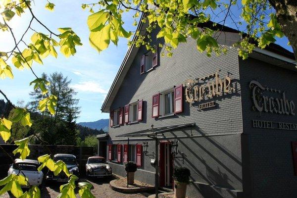 Hotel Restaurant Traube - фото 16