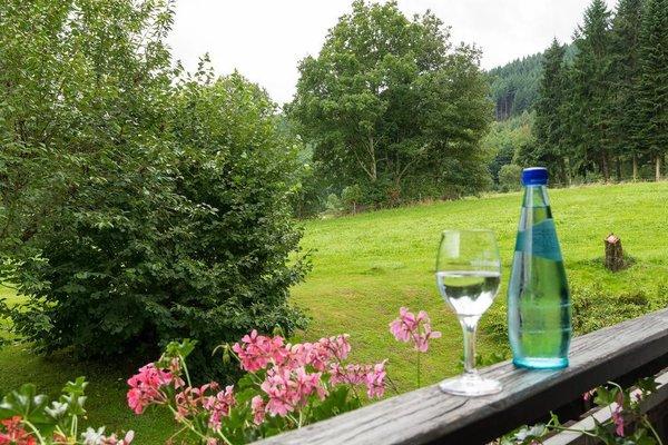 Gasthof & Landhotel Ohrnbachtal - фото 21
