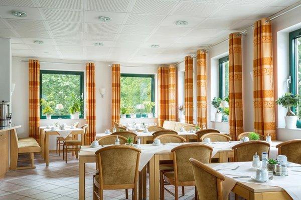 Hotel Aulmann - фото 12