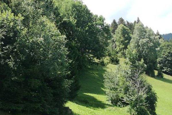 Apart Tiefenbach - фото 15