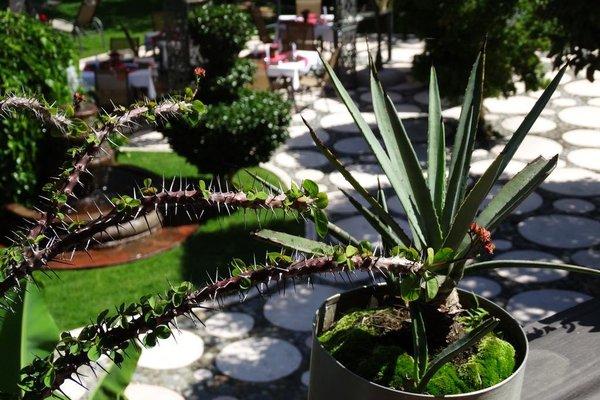 Paraiso Hotel Garden And Spa - фото 21