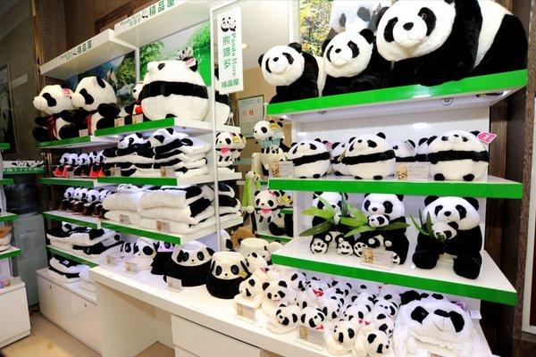 Chengdu Panda Prince Culture Hotel - 12