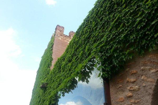 Castillo De Pilas Bonas - 15