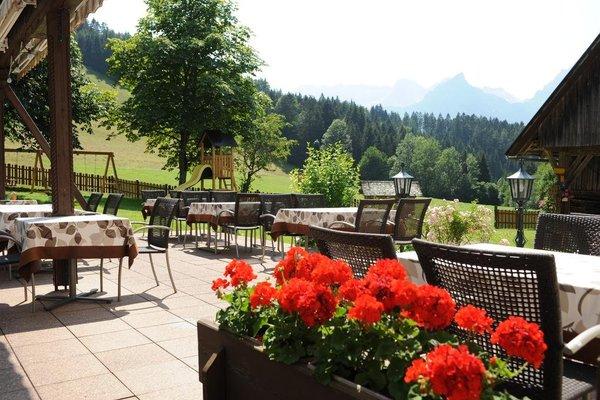 Landhotel Gressenbauer - фото 4
