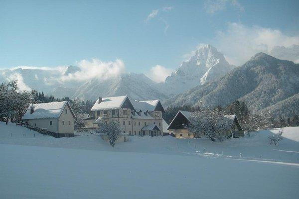 Landhotel Gressenbauer - фото 8