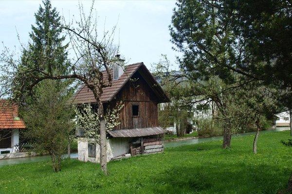 Bauernhof Steinwand - фото 3
