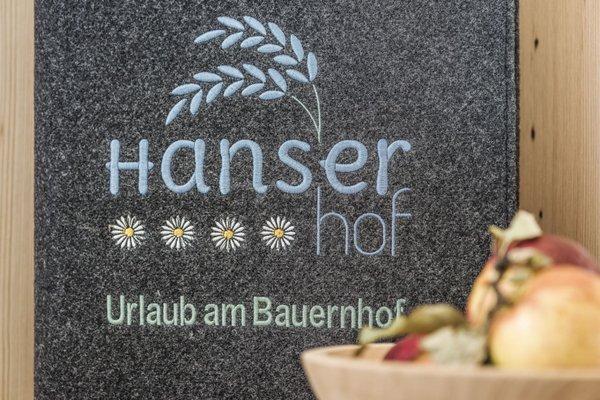 Hanserhof Bauernhaus - 10