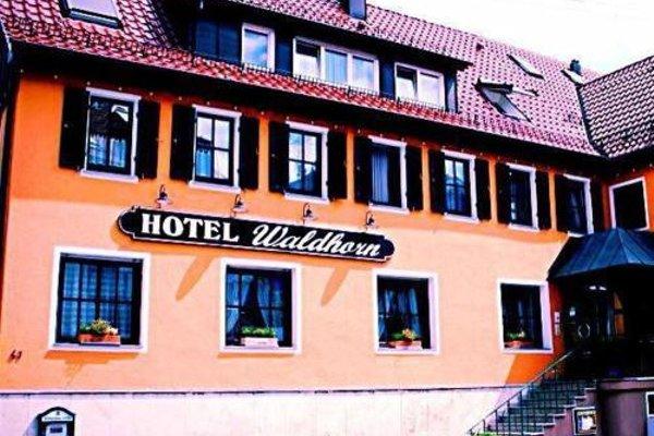 Hotel Waldhorn - фото 13