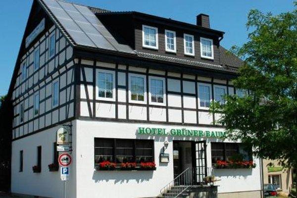 Gruner Baum - фото 18