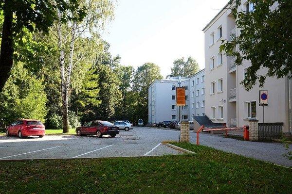 Academus Hostel - фото 22