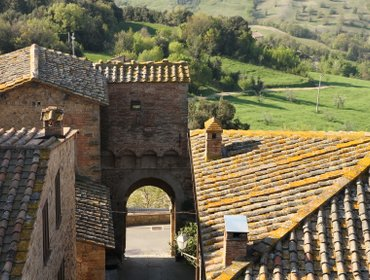 Апартаменты Frantoio: ENJOY THE TRUE ESSENCE  OF TUSCANY