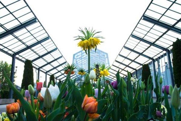 Dehner Blumen Hotel - фото 23