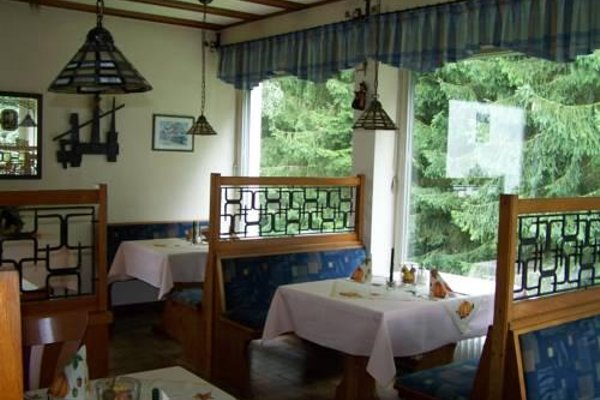 Hotel Tannenhof - фото 17