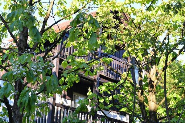 Landhotel Martinshof - фото 19