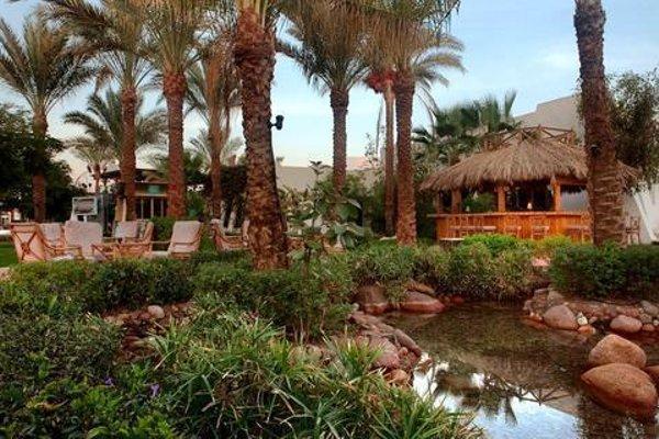 Hilton Sharm El Sheikh Fayrouz Resort - фото 16